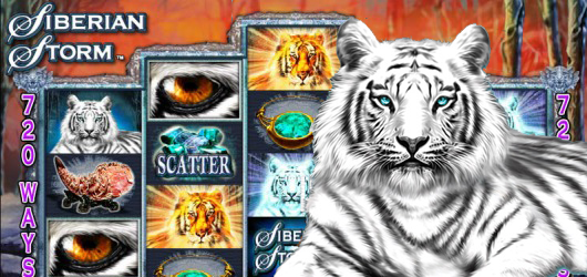 free online casino slot machine games angler online