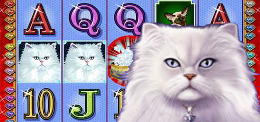 Kitty Glitter Slot Free Play